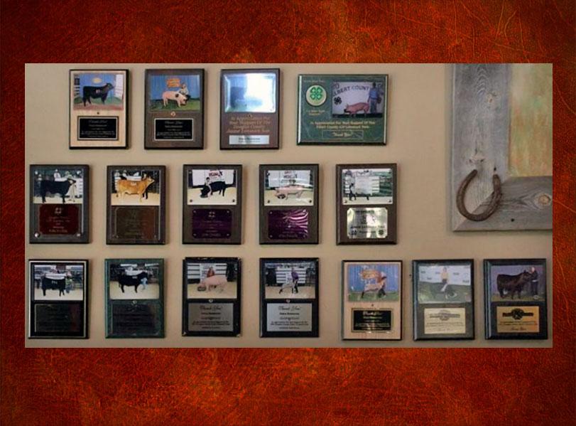 4H Sponsorship Awards